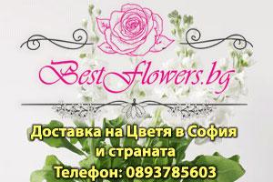 Най добрите цветя - доставка в цялата страна