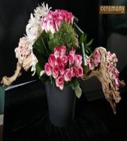 CEREMONY ORGANIZASYON LTD  Collection  2014