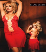 Elawin Lingerie Collection  2013
