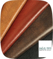 SAGOL LEATHER LTD.  Kollektion  2014
