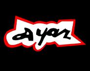 Ayaz Promotional Bags